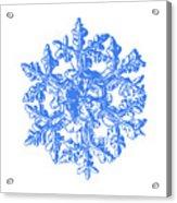 Snowflake Vector - Gardener's Dream White Version Acrylic Print