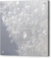 Snowflakes From Heaven 1 Acrylic Print