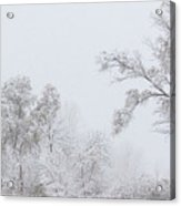 Snowing In A Starbucks Parking Lot Acrylic Print