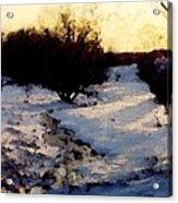 Snowmelt Acrylic Print