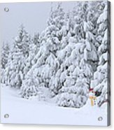 Snowmen In France Acrylic Print