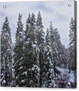 Snowy Christmas At Big Bear Lake Acrylic Print