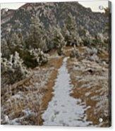 Snowy Colorado Trail Acrylic Print
