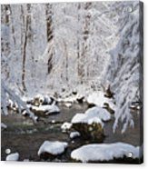 Snowy Day Acrylic Print