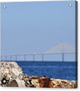 Snowy Egret And Sunshine Skyway Bridge Acrylic Print
