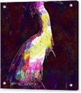 Snowy Egret Waterfowl Bird Large  Acrylic Print