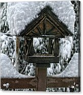 Snowy Feeder Acrylic Print