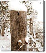 Snowy Fence Post Acrylic Print