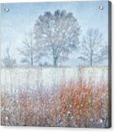 Snowy Field 2 - Winter At Retzer Nature Center  Acrylic Print