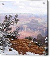 Snowy Frame - Grand Canyon Acrylic Print