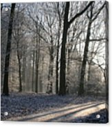Mystical Winter Landscape Acrylic Print