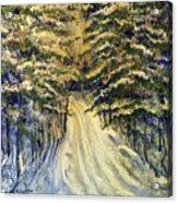 Snowy Lane Acrylic Print