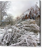 Snowy Mountains In Zion Acrylic Print