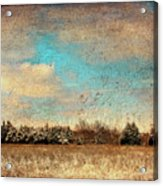 Snowy Pasture Acrylic Print