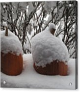Snowy Pumpkins Acrylic Print