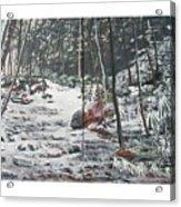 Snowy Stream2 Acrylic Print