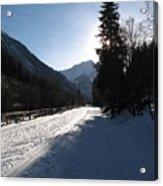 Snowy Track Acrylic Print