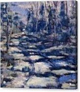 Snowy Trail Acrylic Print