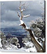 Snowy View Acrylic Print