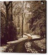 Snowy Woodland Walk One Acrylic Print