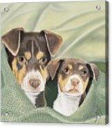 Snuggle Buddies Acrylic Print
