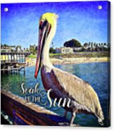 Soak Up The Sun Quote, Cute California Beach Pier Pelican Acrylic Print