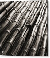 Soaking Bamboo Stalks Acrylic Print