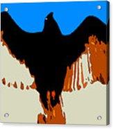 Soaring Raptor Acrylic Print