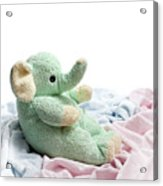 Soft And Cuddly Acrylic Print