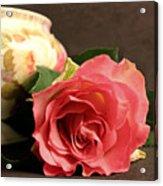 Soft Antique Rose Acrylic Print