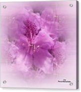 Soft Edged Floral Acrylic Print