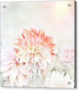 Soft Focus Floral Background Acrylic Print