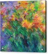 Soft Iris 2 Acrylic Print