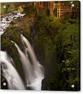 Sol Duc Falls Acrylic Print