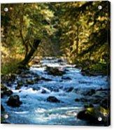 Sol Duc River Above The Falls - Washington Acrylic Print