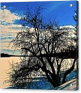Solace On Silver Lake Acrylic Print