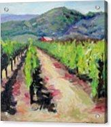 Solano Vineyards Acrylic Print