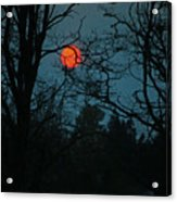 Solar Disguise Acrylic Print