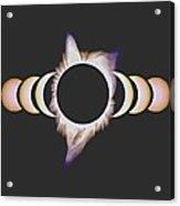 Solar Eclipse, 25 Acrylic Print