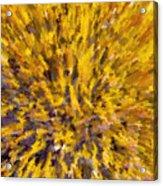 Solar Furnace Acrylic Print