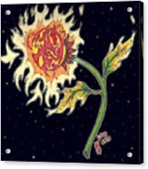 Solar Sun Flower Acrylic Print by Law Stinson