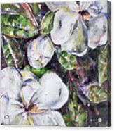 Sold Steal Magnolias Acrylic Print