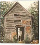 Solitaire Near Enterprise.  Solitary Horse Looking Out From Barn Door Acrylic Print by Lynn ACourt