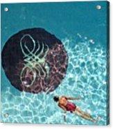 Solo Float Acrylic Print