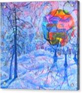 Solstice Acrylic Print