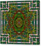 Some Color 89 Acrylic Print