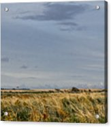 Something About Wind And Sun. Acrylic Print