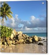 Somewhere in Barbados Acrylic Print