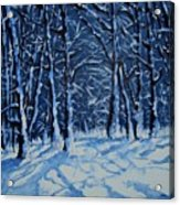 Somich Snow Acrylic Print