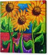 Sonflowers II Acrylic Print